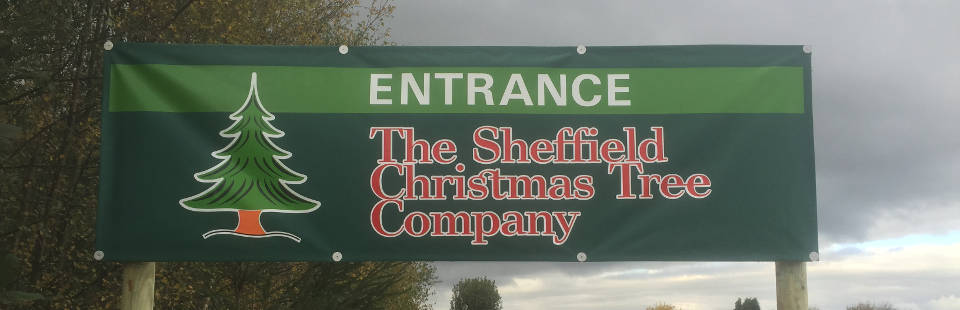 Sheffield Christmas Tree Company